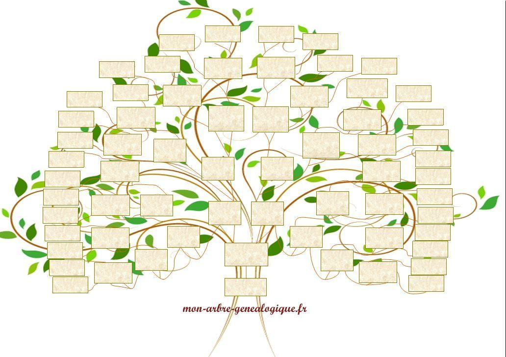 Mon arbre g n alogique fa tes appel un g n alogiste professionnel voir les tarifs - Arbre genealogique dessin ...